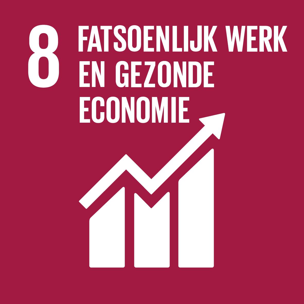 08. Fatsoenlijk werk en gezonde economie